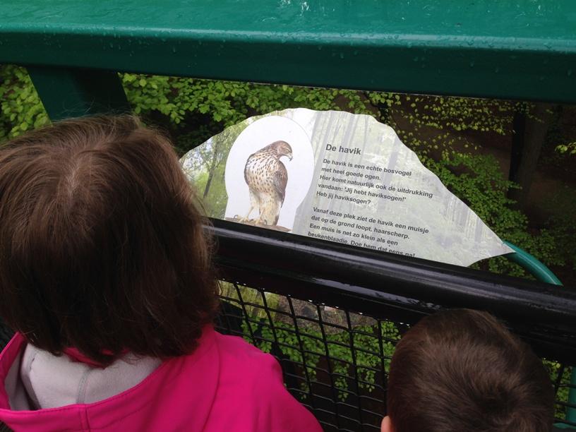 Op het Boomkroonpad is allerlei informatie over de omgeving te lezen.
