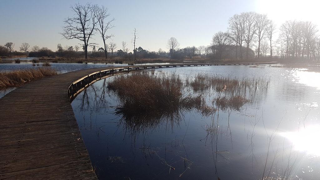 De Empese en Tondense heide ligt vlakbij Zutphen.
