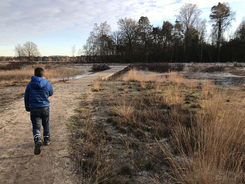 De wandelroute over de Gorsselse Heide is het hele jaar door de moeite waard.