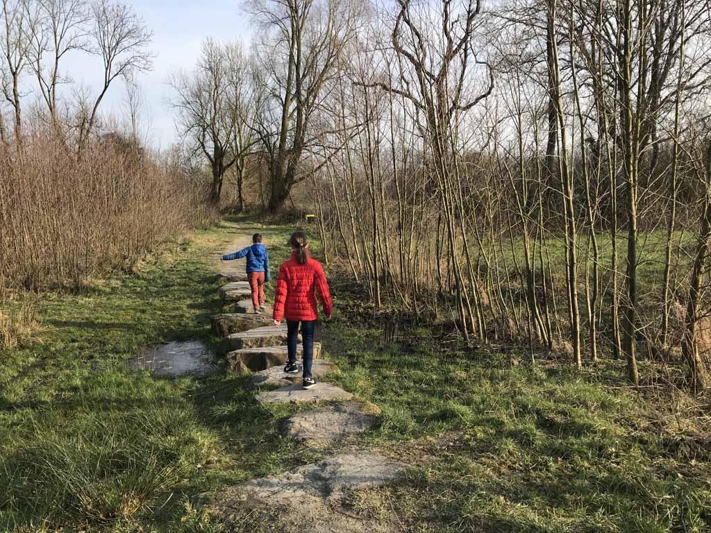 De wandeling in het Beekbergerwoud is een van de meest afwisselende korte wandelroutes in Gelderland.