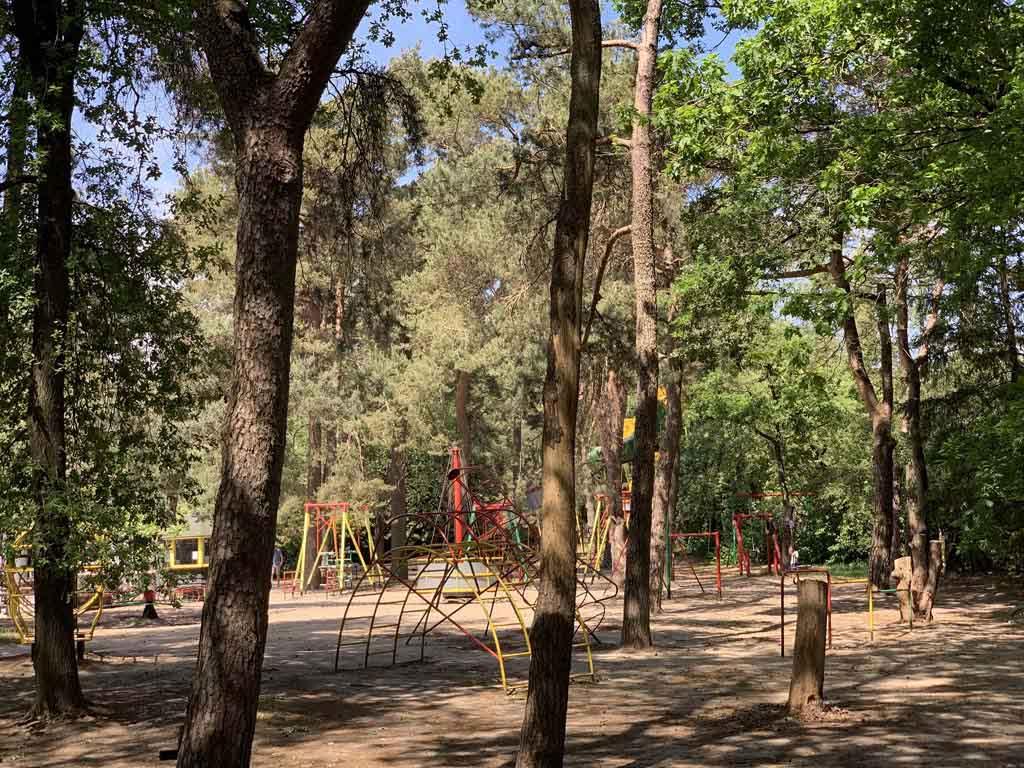 Na het wandelen kunnen kinderen spelen in de speeltuin in het bos bij Het Uilenbos.