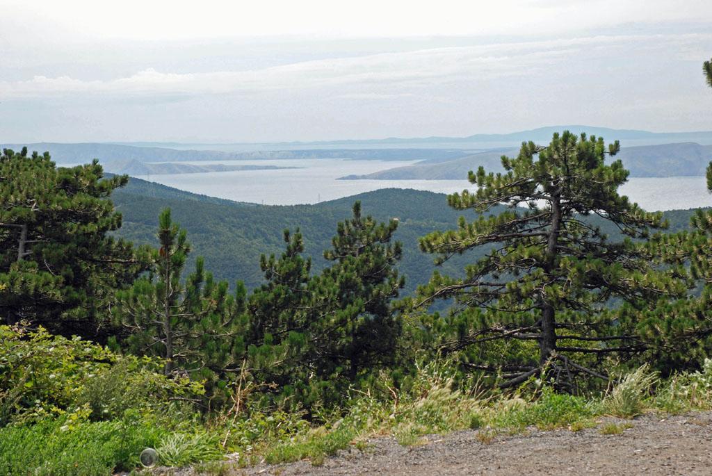 Vanaf de kust rijd je zo de bergen in en heb je een prachtig uitzicht over de Golf van Kvarner kvarner-eiland-18