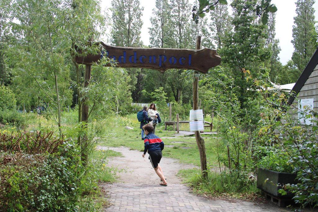 En dan... De paddenpoel, een supertoffe natuurspeeltuin die je zeker moet bezoeken als je in Haarlem bent met kinderen.