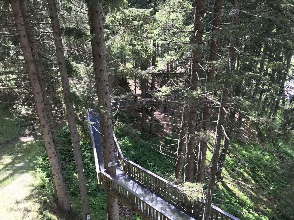 Deze 'wipfelwandelweg' is 2 kilometer lang en loopt 30 meter boven de grond, daarmee is het de hoogste boomtoppenwandeling van Europa.