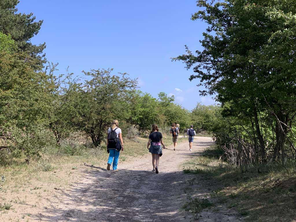 Het lange rechte pad is wat saaier om te wandelen.