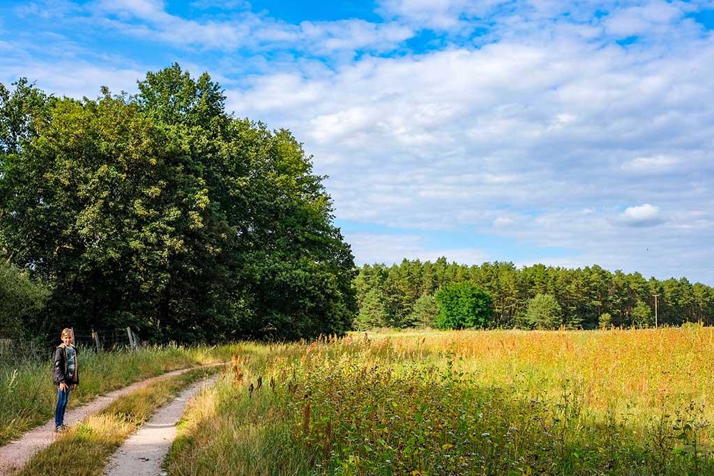 Wandelen door de prachtige natuur van Saksen-Anhalt