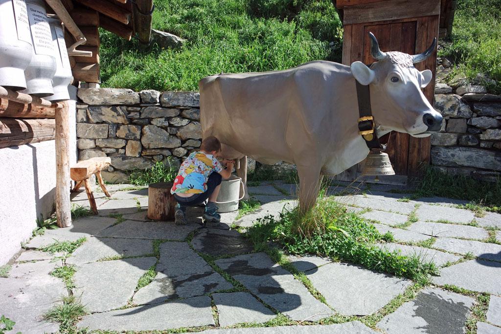 heidi-in-de-bergen Dat koeien melken is echt niet zo makkelijk