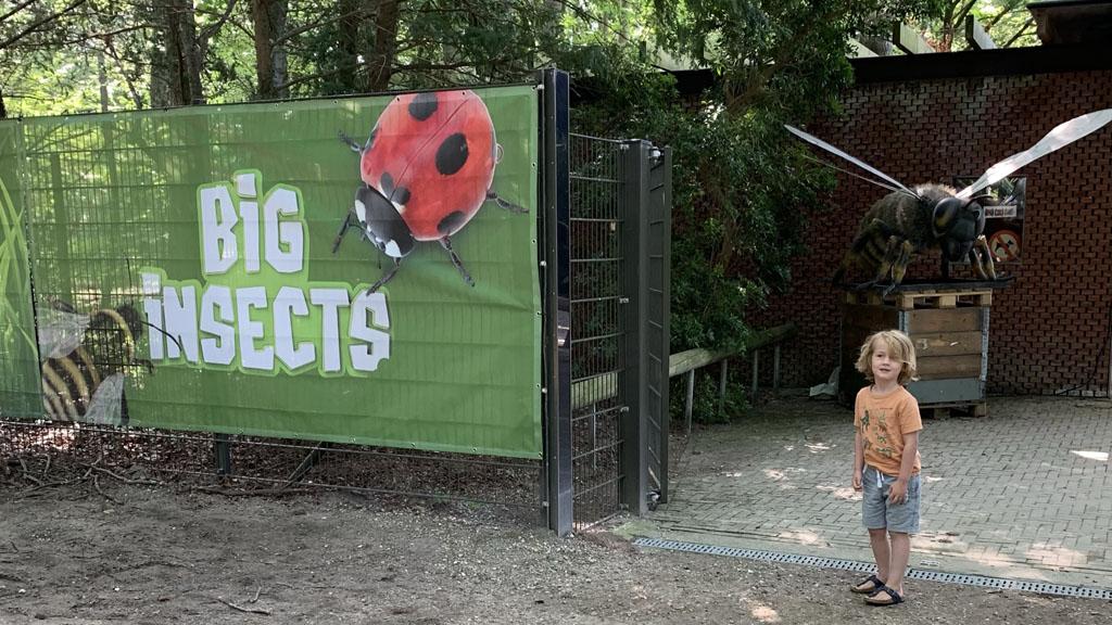 Bij aankomst stuiten we meteen op een bewegend insect. Best even spannend.