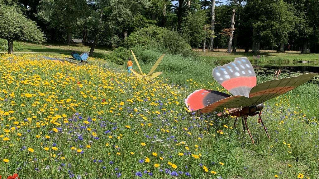 In dit kleurrijke bloemenveld zijn prachtige vlinders neergestreken.